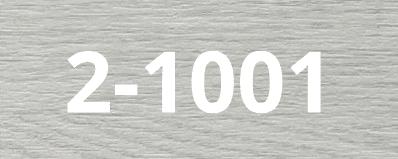 2-1001-1