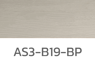 AS3-B19-BP