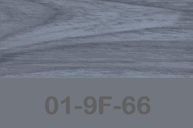 TP-01-9F-66
