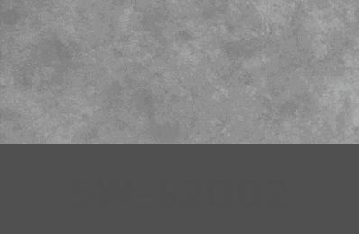 SW-S2002