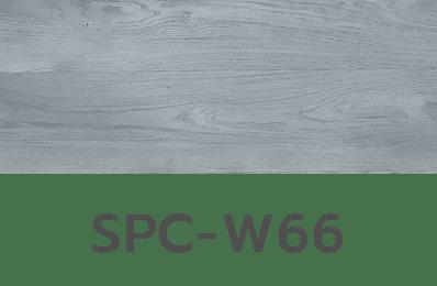 SPC-W66