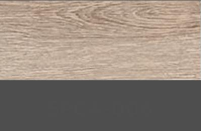 SPC4-006