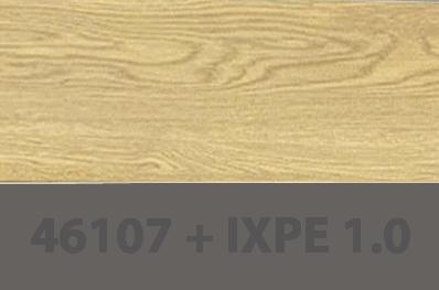 46107+IXPE
