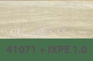 41071+IXPE