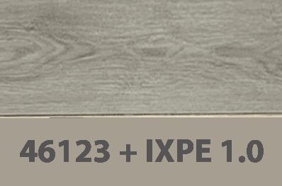 46123+IXPE